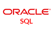 Oracle SQL Program