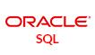 Oracle SQL Program