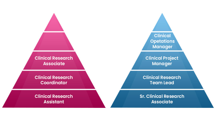 Clinical Research postions